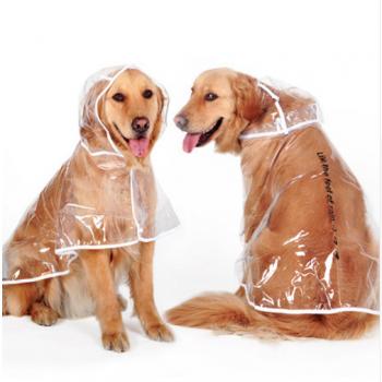 Transparent Autumn Dog Raincoat Dog's Accessories