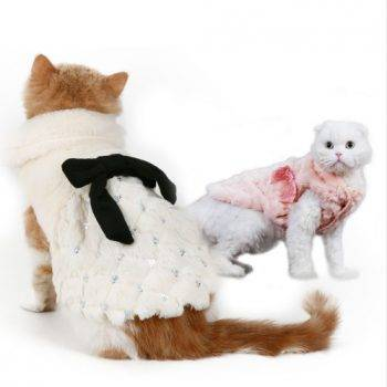 Elegant Winter Coat Cat's Accessories