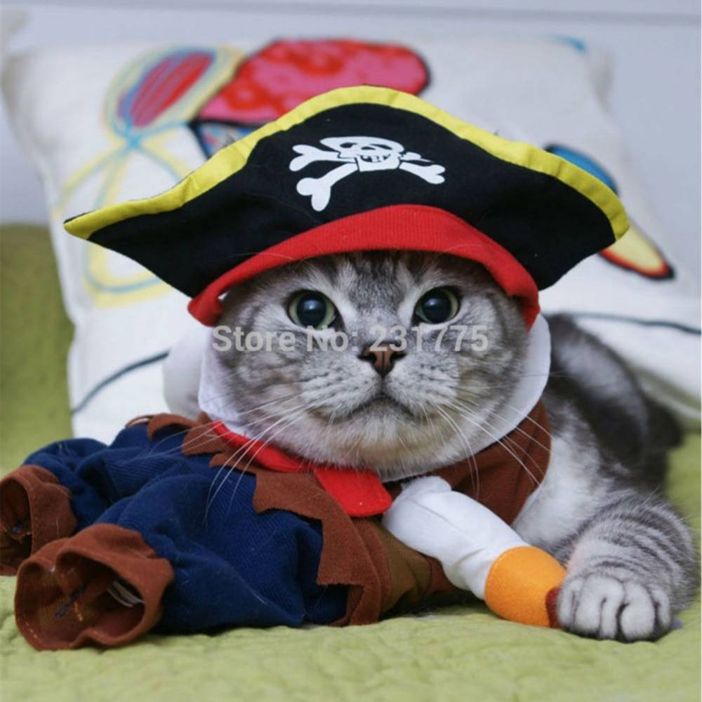 Funny Cat Clothes Pirate Suit Clothes For Cat Costume Clothing Corsair Halloween Clothes Dressing Up Cat Party Costume Suit Cat's Accessories