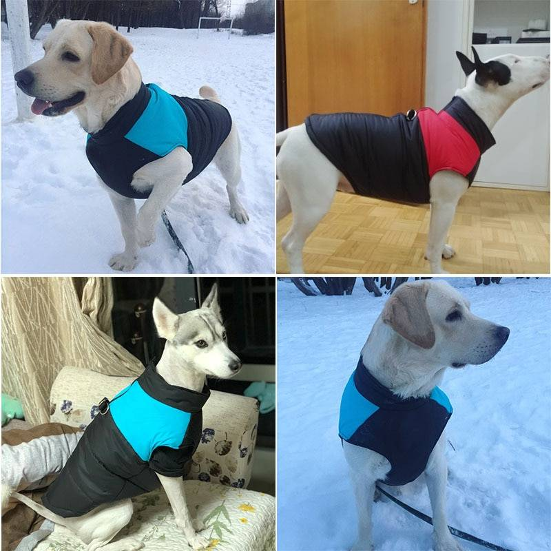 Winter Dog Pets Clothes Clothing for Small Large Dogs Waterproof Pet Jacket Dog Coat Chihuahua Padded Vest Zipper Jacket Coat Dog's Accessories